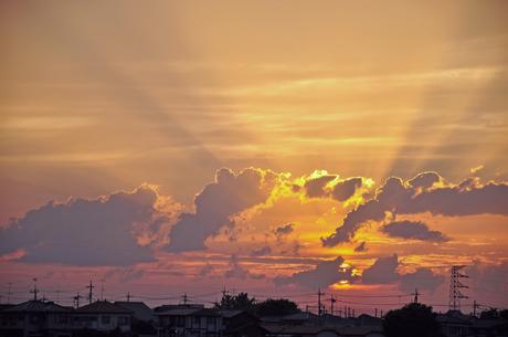 埼玉県田畑農道からの夕日