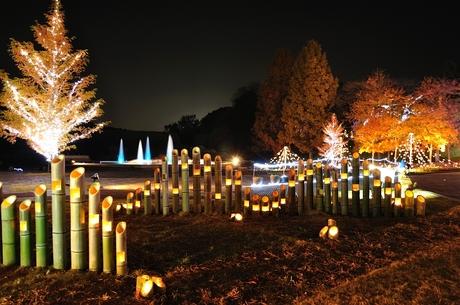 埼玉県滑川町森林公園イルミネーションライトアップ