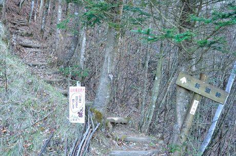 山梨県河口湖新道峠富士山写真