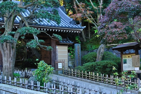 神奈川県鎌倉市報国寺画像