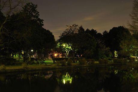 埼玉県行田市水城公園写真