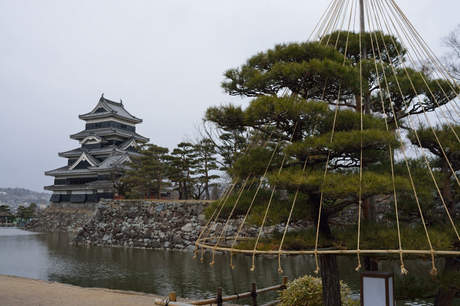 長野松本城画像