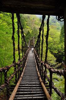 徳島県奥祖谷二重かずら橋男橋画像