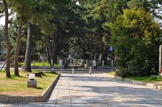 奈良県法隆寺画像